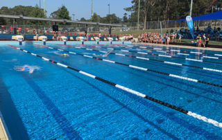 Holy-Spirit-Catholic-Primary-School-North-Ryde-Swimming-Carnival